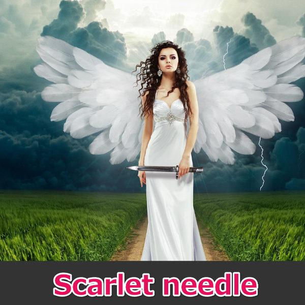 Scarlet needle